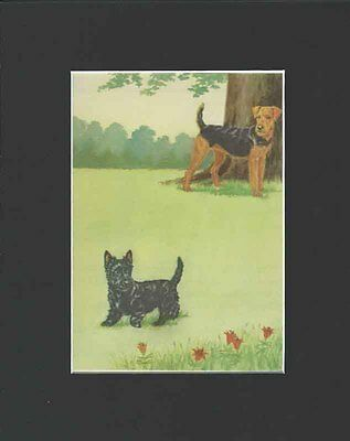 Vintage Airedale & Scottish Terrier Dogs & Cute Print by  Marguerite Kirmse 1941