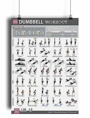 "Dumbbell Workout Exercise Poster Laminated Personal Trainer Gym/Home 19""X27"""