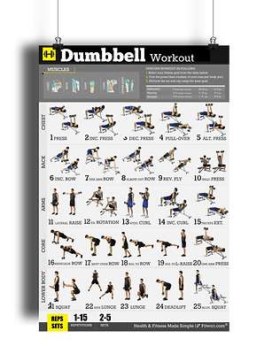 "Dumbbell Workout Poster Strength Training Personal Trainer Gym/Home 18""X24"""