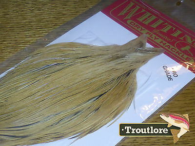 Whiting Farms Dry Fly Cape Golden Badger Whole New Pro Grade Fly Tying Neck