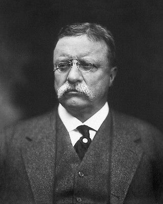 Former US President THEODORE 'TEDDY' ROOSEVELT Glossy 8x10 Photo Print Poster