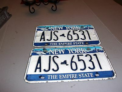 Vintage Matching Set of New York State Blue & White License Plates