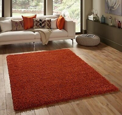 Small - Extra Large Burnt Orange Terracotta Rust Thick Shaggy Luxury Modern Rug