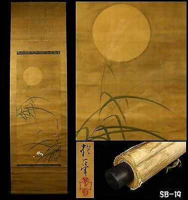 """""""Moon and Narcissus"""" Hanging Scroll by Sakai Hoitsu 酒井抱一 -Japan- Late Edo Period"""