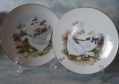 Duck Plates, Decorative Plates, Very Nice!!