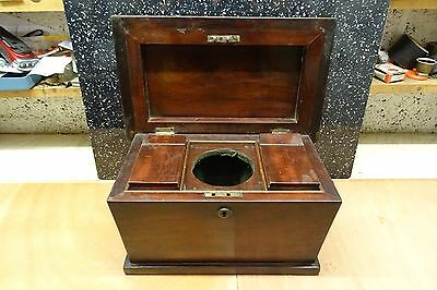 Victorian  Mahogany Tea Caddy With Lion With Rings In Mouth Handles.