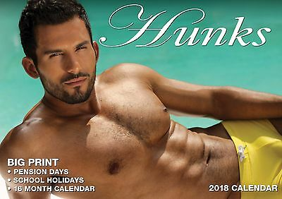 Hunks 2018 Big Print Wall Calendar NEW by Bartel Calendars - Postage Included