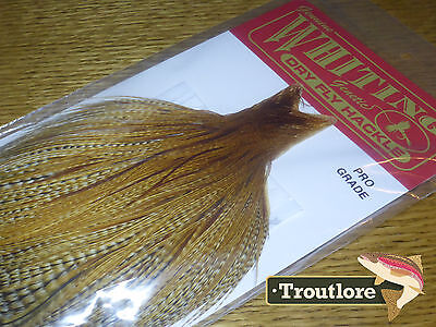 Whiting Farms Dry Fly Cape Dark Barred Ginger #2 Whole New Pro Grade Tying Neck