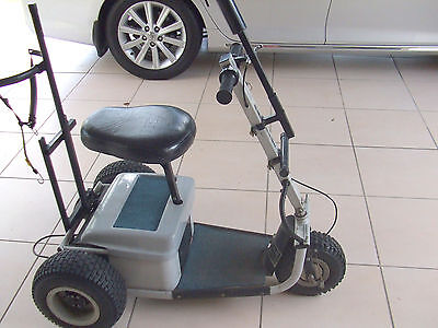 Parmaker Ride on Electric Buggy, Fresh Batteries, 2 chargers,Top condition