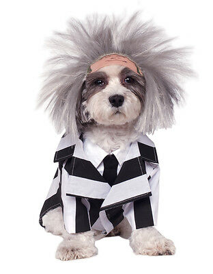 "Beetlejuice Pet Dog Costume,Small, Neck to Tail 11"", Chest 17"""