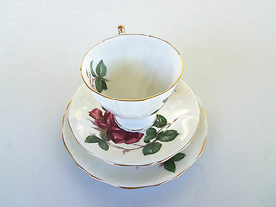 Adderley 'symphone' Cup & Saucer & Serving Plate Three Piece Set Excellent Order