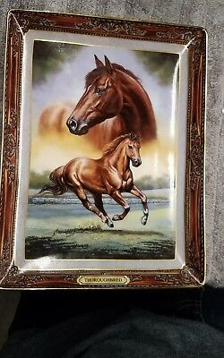 Thoroughbred: Portrait Of A Champion The Franklin Mint Heirloom Porcelin Plate
