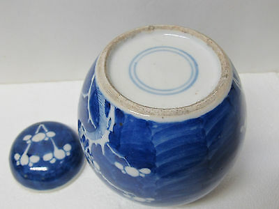 Fine Antique Chinese Blue and White Porcelain Tea Caddy with Plum Blossom Design