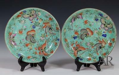 Superb Chinese Turquoise Ground Famille Rose Plates