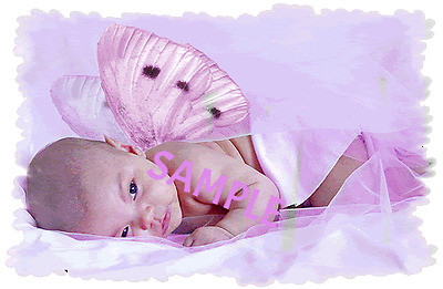 305 Pretty Pastel Reborn Auction Template Fake Baby/doll/reborn/ooak