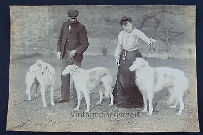 3 - Russian Borzoi Dogs With Man & Woman Late 1800's/Early 1900's Original Photo