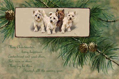 West Highland Terrier Dogs 1930s A. WARDLE New LARGE Blank CHRISTMAS Note Cards