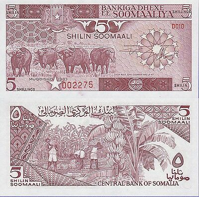 Somalia 5 Shillings Banknote 1983 Uncirculated Condition  Cat#31-A-2275