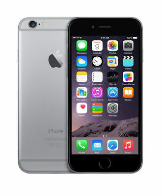 Apple iPhone 6 Space Gray GSM UNLOCKED 16GB (MG5W2LL/A) (A1549)