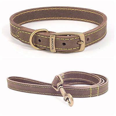 ** CLEARANCE SALE** TIMBERWOLF LEATHER FLAT COLLAR or LEAD in Sable / Brown