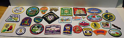 Lot of 29 Miscellaneous Girl Scout Patches