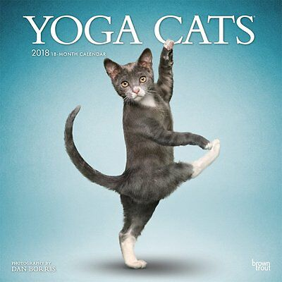 Yoga Cats 2018 Wall Calendar by Browntrout NEW - Postage Included