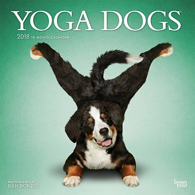 Yoga Dogs 2018 Wall Calendar by Browntrout NEW - Postage Included