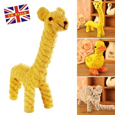 Dog Tough Strong Chew Knot Teddy Toy Pet Puppy Healthy Teeth Bear Cotton Rope K