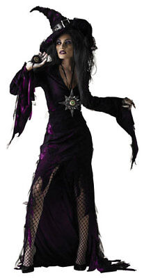 Sorceress Adult Witch Halloween Costume