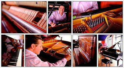 PIANO TUNER Tuning including a service !