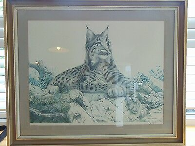 ERIC TENNEY LIMITED EDITION OF 850 SIGN LARGE  PRINT OF SPANISH LYNX 775mm X 640
