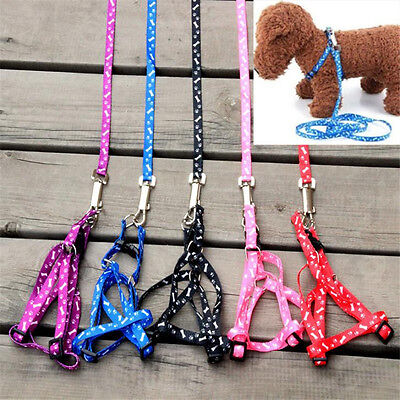 Pet Dog Cat Puppy Printing Leading Harness Belts Leash Set for small size Dog T4