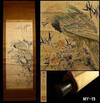 """Hawk"" Hanging Scroll by Hoashi Kyouu 帆足杏雨 -Japan- Antique Meiji Period"