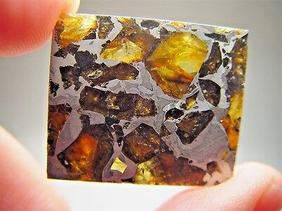 Museum Quality! Amazing Crystals! Beautiful Brahin Pallasite Meteorite 13.1 Gms