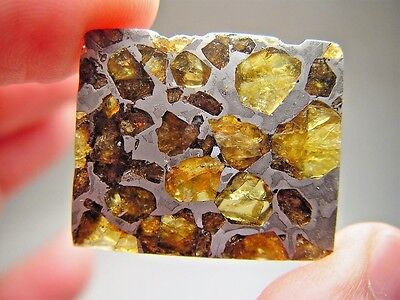 Museum Quality! Amazing Crystals! Beautiful Brahin Pallasite Meteorite 11.2 Gms