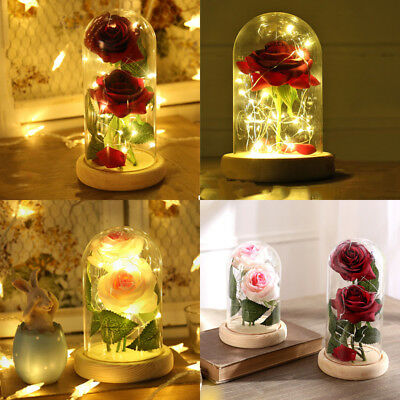 New Beauty and the Beast Enchanted Rose Fairy Tale Belle Glass Decor Gift