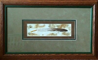 Framed Original Painting Danielle Mccauly Otoe Missouria Native American