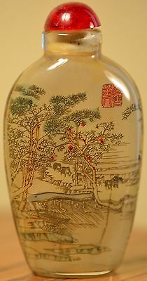Reverse Glass Painted Asian Snuff Bottle, Great Condition & Signed! Amazing!