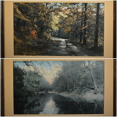 Pair of Very Nice Antique Colored Photographs of Wooded Landscapes, Well Framed!