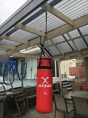 Sting Punching Bag With Hanging Chain