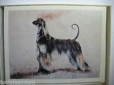 Afghan Hound Notecards Best Friends by Ruth Maystead
