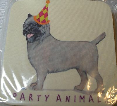 Cairn Terrier Party Animal Coasters Set 4 by Zeppa Studios