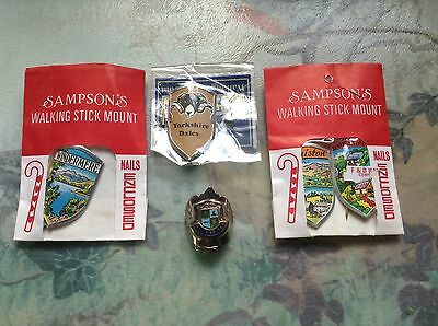 Walking stick mounts,badges
