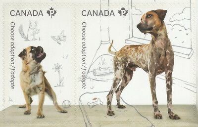 ca. DOGS stamp pair nicely cut from booklet ADOPT A PET Canada 2013 #2639-40 MNH
