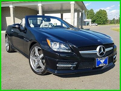 2015 Mercedes-Benz SLK-Class SLK250 2015 Mercedes SLK250 Turbo 1.8L I4 16V Automatic RWD Hardtop Convertible 15