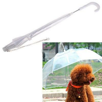 Pet Dog Leash Umbrella Transparent Built-in Puppy Cat Dry Comfortable in Rain