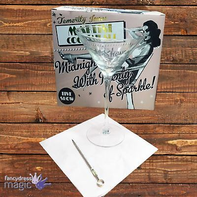 Martini Drink Cocktail Mixer Glass 2 Set Gift Box Glasses Hen Party Favour