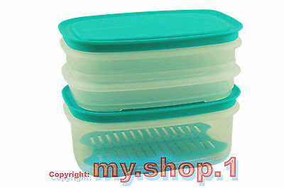★★★my.shop.1-1★★★ Tupperware® Junior Cool 'N Fresh Boxen XL-Set (6) mint NEU+OVP