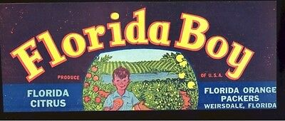 ORIGINAL Marion County FL Fruit Vegetable Produce Labels Ocklawaha River Citrus