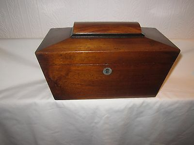 Antique mahogany sarcophagos tea caddy with lead lined twin compartments